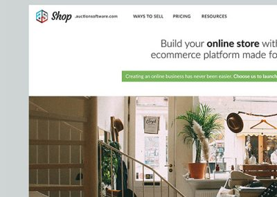 AuctionSoftware.com Web Design